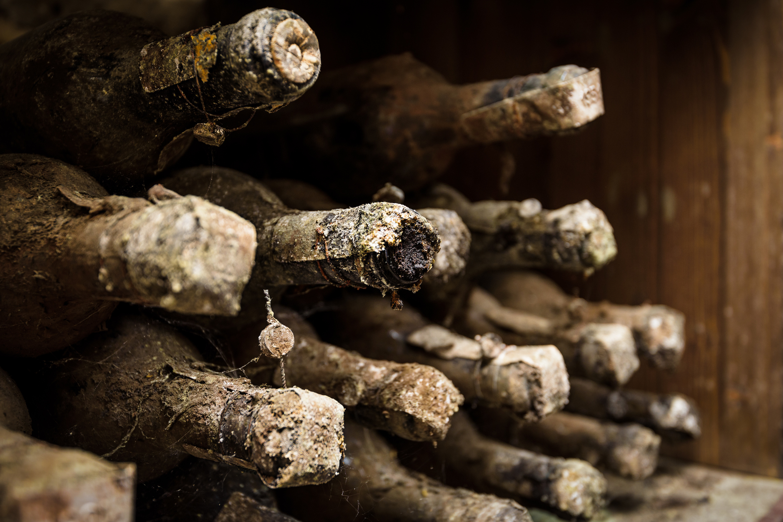 Distilled Spritis - The Last Bar in America